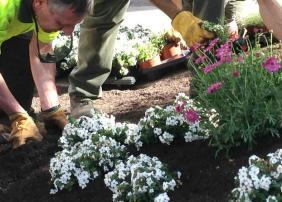 Jardineros municipales